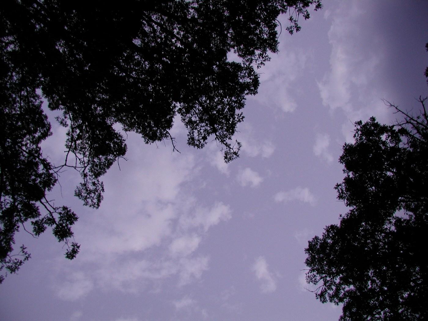 early morning sky from savasana