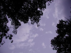 early morning sky from savasana