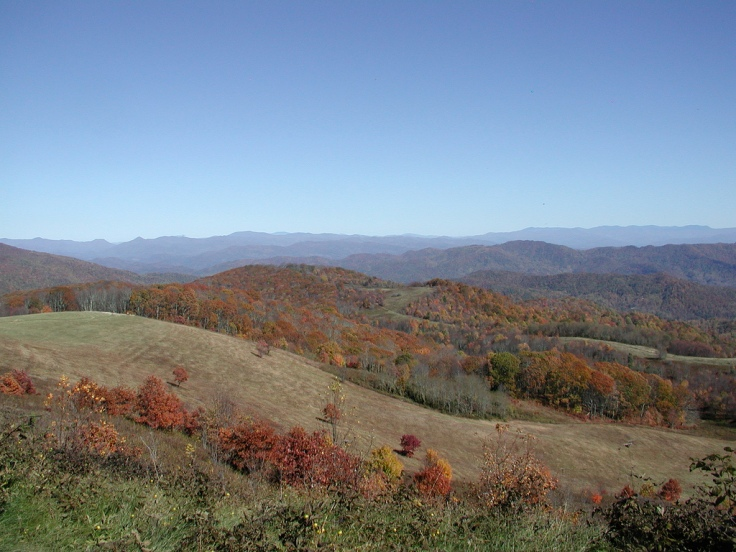 fall from max patch