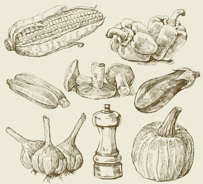 Art-illustration that represents the hand drawn image of vegetables