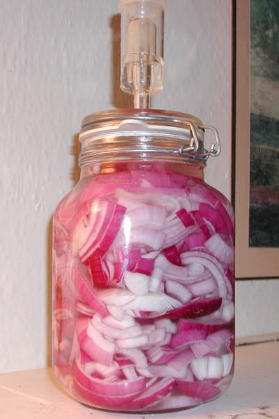 Pickling (fermenting) red onions