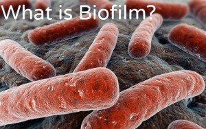 What-is-Biofilm