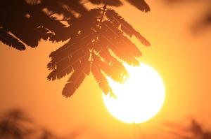 sun-866451_640