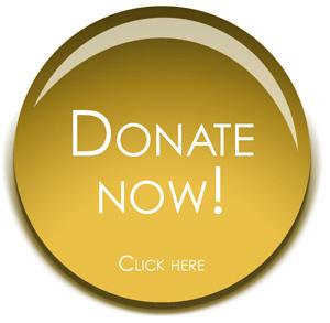 paypal-donate-button-big